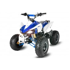 ATV Speedy RS 125cc